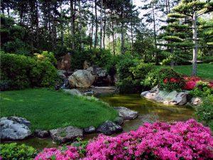 jardin en ville c'est possible